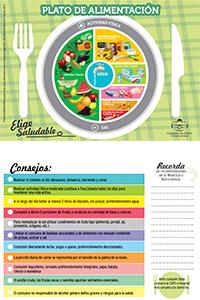 Modelo-Plato-Alimentacioin