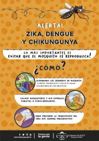 web-afiche-dengue
