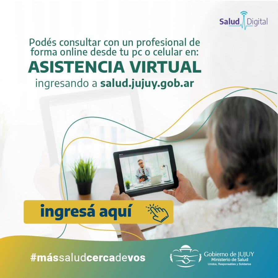 asistencia virtual (3)