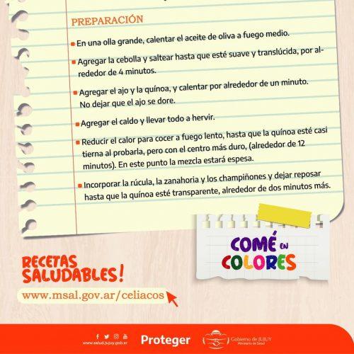 Recetas Saludables 2a